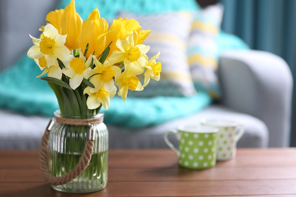 Fresh yellow flowers in vase sitting on coffee table in living room in front of couch