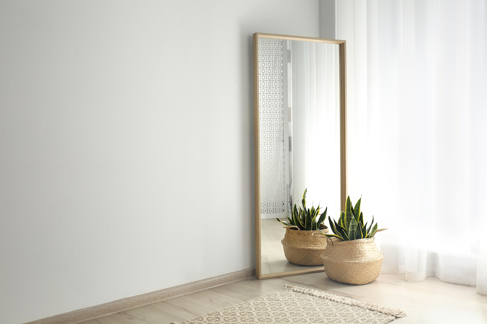A plant sits in front of a mirror in a sunny apartment.